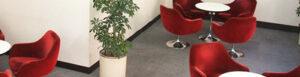 トーク・アベニューレッスンルームの写真。白い丸テーブルを囲んで赤い椅子が置かれている、ラウンジスタイルのレッスンルーム